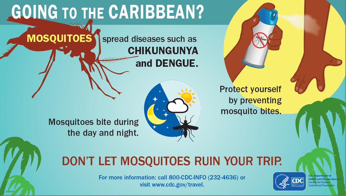 How to Avoid the Chikungunya Virus this Summer