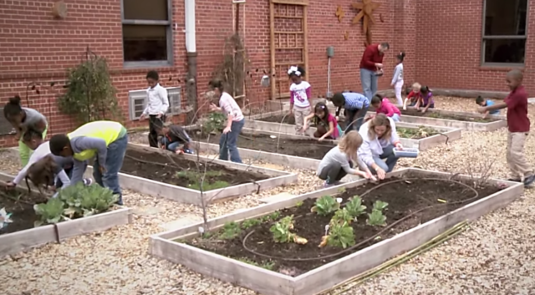 Ebinport Elementary will enhance their existing Classroom Garden through increased composting effectiveness, organic protection from pests and frost, space utilization with vertical gardening, and indoor seedling growth.