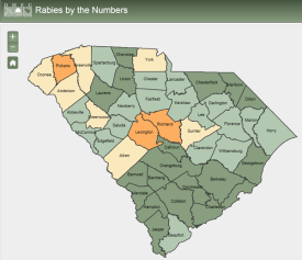 The South Carolina Rabies Application provides the summary statistics of rabies cases by county, species and year.
