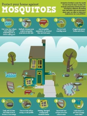 Download our helpful information sheet on protecting your home against mosquitoes.  English Spanish