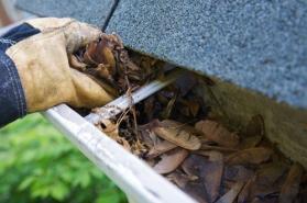 clean-gutters-istock_000006269745medium