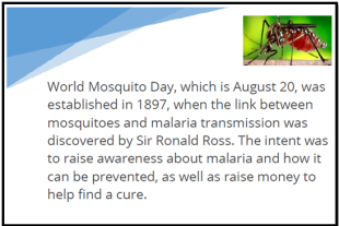 WorldMosquitoDayImage
