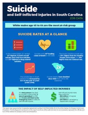 2019-06 SCVDRS Suicide Factsheet[78]_Page_1