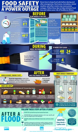 Food safety before during after english