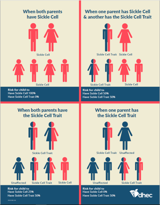 Sickle Cell DHEC Infographic